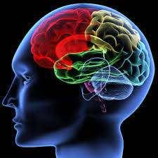 62 дивовижних факту, розбурхують свідомість
