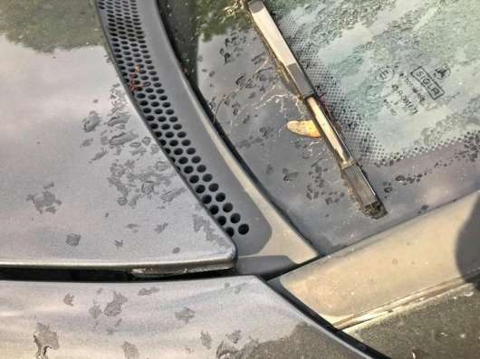 Звідки береться вода в машині? Це велика проблема навесні і восени