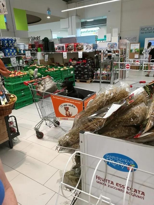 17 супермаркетів і магазинів одягу, які живуть в 3019 році